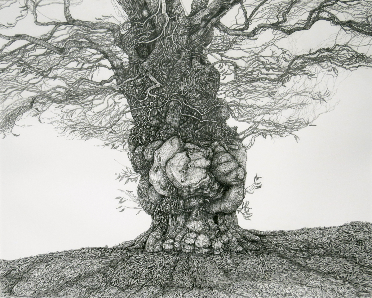 Black Pastel Painting of a gnarled  chestnut tree
